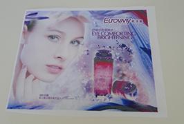 דגל בד מודפס על ידי 1.6m (5 רגל) eco ממס מדפסת WER-ES160 4