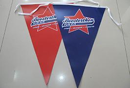 דגל בד מודפס על ידי 1.8m (6 רגל) eco ממס מדפסת WER-ES1801 2