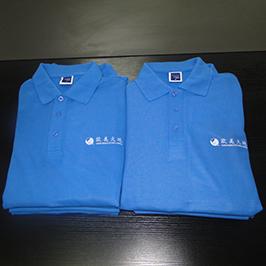 פולו חולצה אישית דפוס הדפסה על ידי A3 חולצת טריקו מדפסת WER-E2000T
